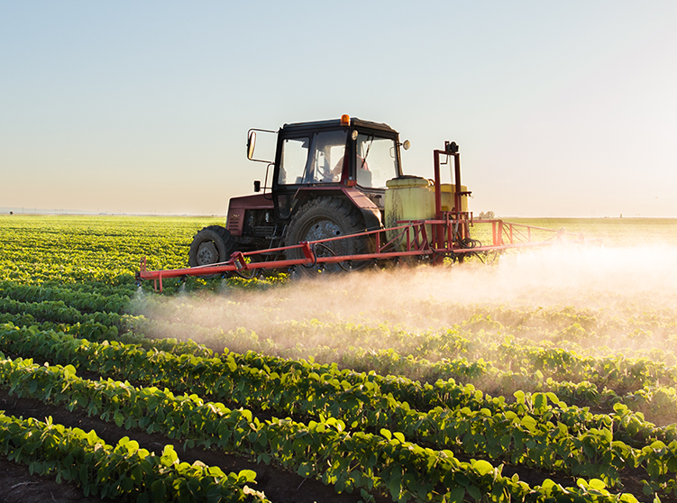 How Crop Insurance Helps to Minimize 5 Key Risks Facing American Farmers