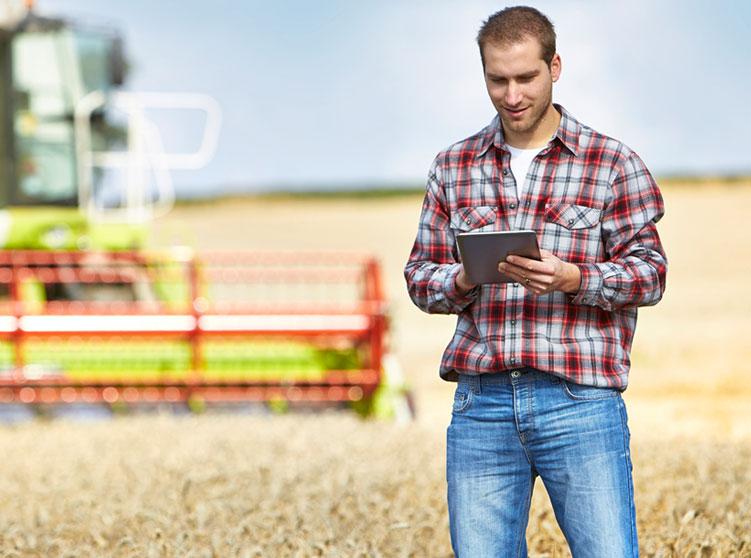 Crop Insurance Basics: Actual Production History