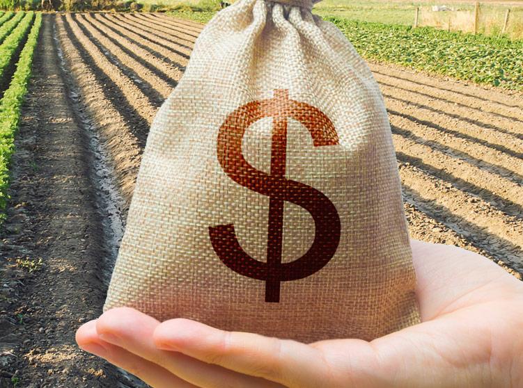 Farm Storage Loan update